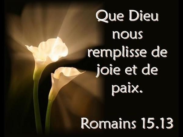 Michel blogue /Le Mercredi des cendres/Le Carême /La souffrance /La joie en citations/ 28498942